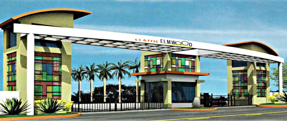 Classic Elmwood