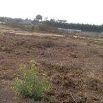 Shri Samrudhi Homes Site View